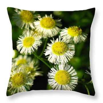 Flowers Throw Pillow