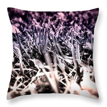 #flowers #flower #tagsforlikes.com Throw Pillow by Jason Michael Roust