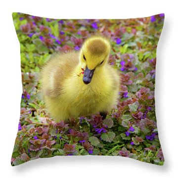 Flowers For Lunch Throw Pillow