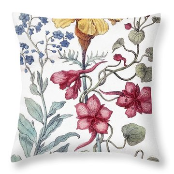 Flowers From From Histoire Des Insectes De L'europe Throw Pillow