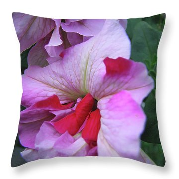 Flowers From Johnny - Petunia Throw Pillow