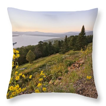Flowers Height Of Land Throw Pillow by Peter J Sucy