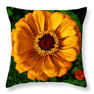 Throw Pillow featuring the photograph Flowers In A Flower 005 by George Bostian