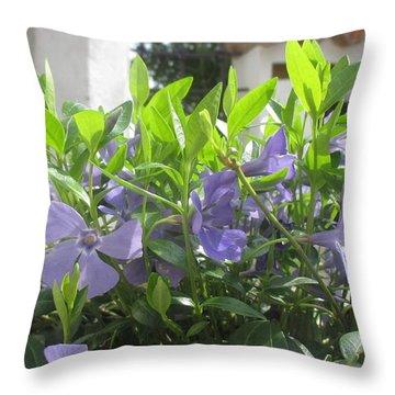 Flowers In Belgrade Throw Pillow