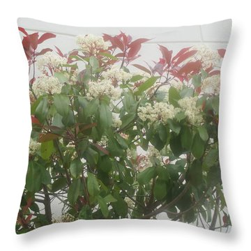 Flowers In Front Of The Library Of The Faculty Of Letters In Lisbon Throw Pillow