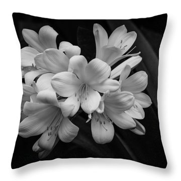 Flowers In Light Throw Pillow