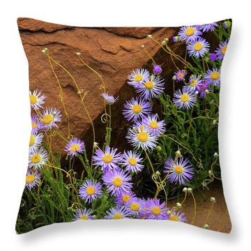 Flowers In The Rocks Throw Pillow by Darren White