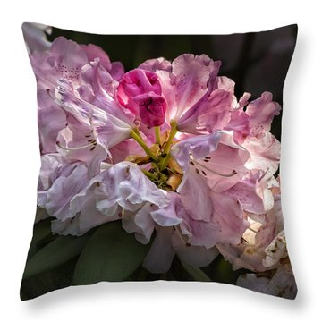 Flowers Late Afternoon Light Throw Pillow