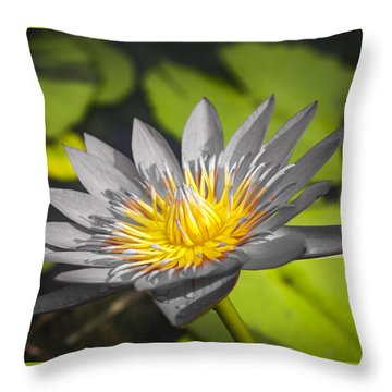 Flowers Of Grey Throw Pillow