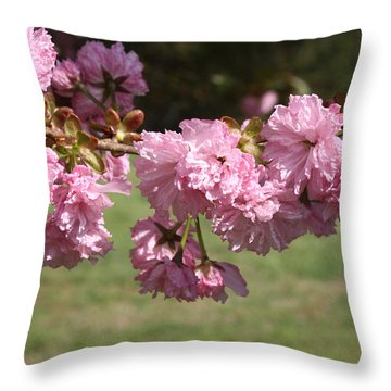 Flowers Of Spring Throw Pillow by Michele Wilson