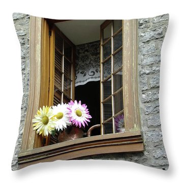 Throw Pillow featuring the photograph Flowers On The Sill by John Schneider