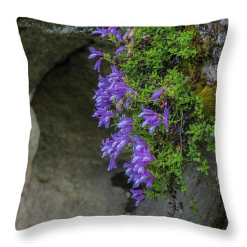 Flowers Throw Pillow by Rod Wiens
