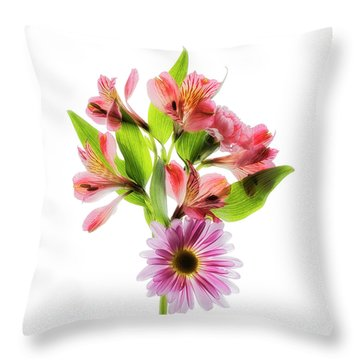 Throw Pillow featuring the photograph Flowers Transparent  2 by Tom Mc Nemar