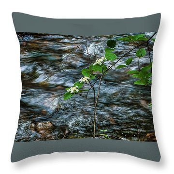 Flower Against Water 8673 Throw Pillow
