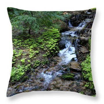 Throw Pillow featuring the photograph Flowing Creek by Ben Upham III