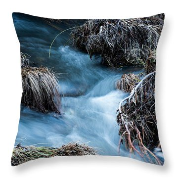 Flowing Creek Throw Pillow