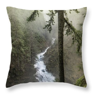 Flowing Falls Throw Pillow