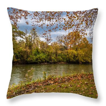 Flowing River Throw Pillow