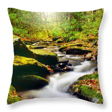 Flowing Softly Throw Pillow