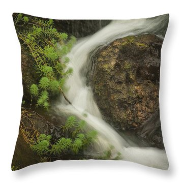 Flowing Stream Throw Pillow