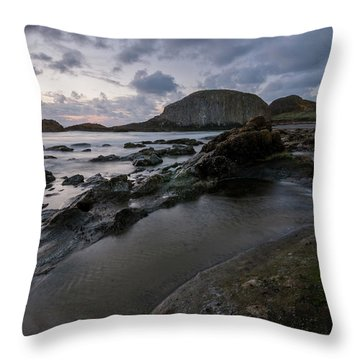 Flowing To The Sea Throw Pillow