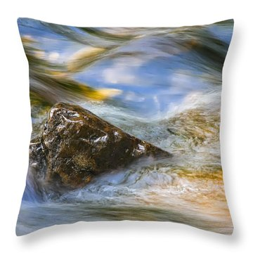 Flowing Water Throw Pillow by Adam Romanowicz