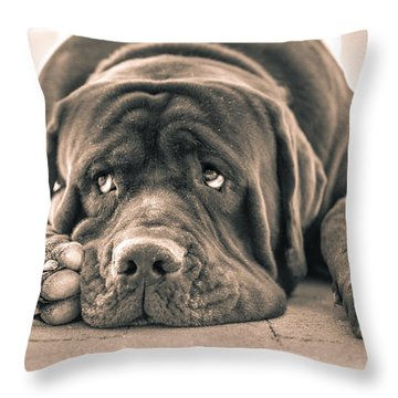 Floyd Throw Pillow