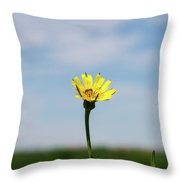 Flp-1 Throw Pillow