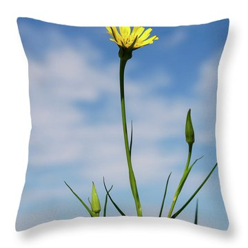 Flp-2 Throw Pillow
