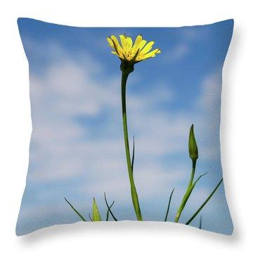 Flp-2 Throw Pillow