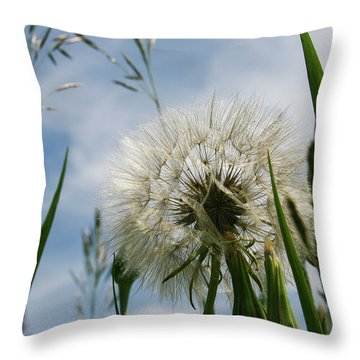 Flp-3 Throw Pillow