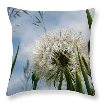 Flp-3 Throw Pillow