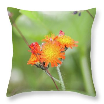 Flp-4 Throw Pillow
