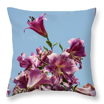 Flp-5 Throw Pillow