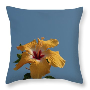 Flp-6 Throw Pillow