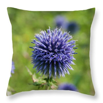 Flp-7 Throw Pillow