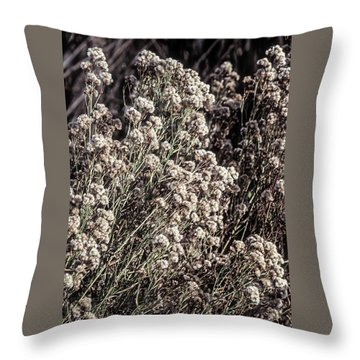 Fluff And Seeds Throw Pillow