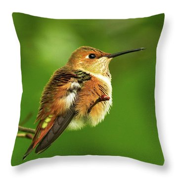 Fluff Ball Throw Pillow