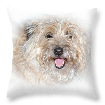 Throw Pillow featuring the photograph Fluff Pup by Debbie Stahre