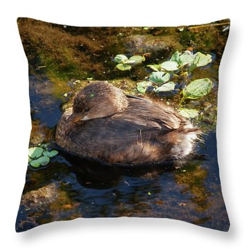 Throw Pillow featuring the photograph Fluffball by Arthur Dodd