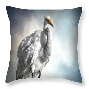 Fluffed And Plumped Throw Pillow