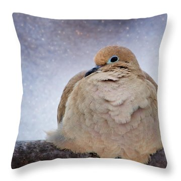 Fluffy Mourning Dove Throw Pillow
