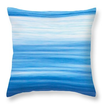 Fluid Motion Throw Pillow