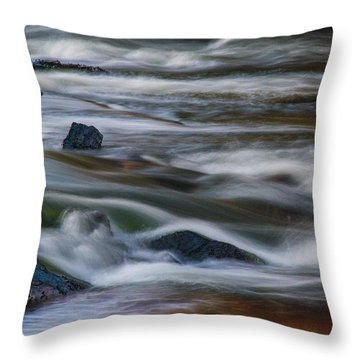 Fluid Motion Throw Pillow by Steven Richardson