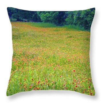 Flush With Flowers Throw Pillow