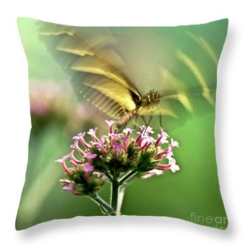 Fluttering Butterfly Throw Pillow by Heiko Koehrer-Wagner