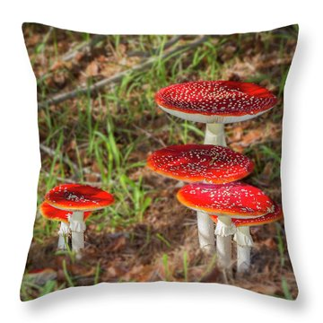 Fly Agaric Amanita Muscaria Throw Pillow