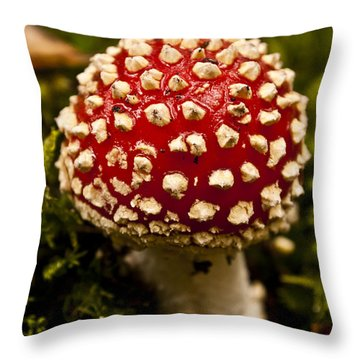 Throw Pillow featuring the photograph Fly Agaric by David Isaacson
