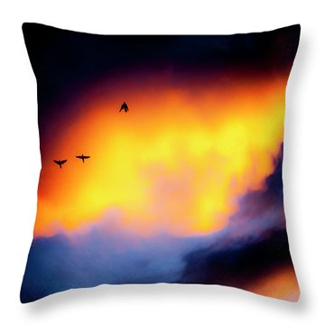 Throw Pillow featuring the photograph Fly Away by Eric Christopher Jackson