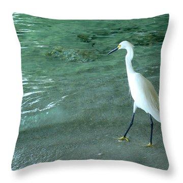 Egret Under Bridge Throw Pillow